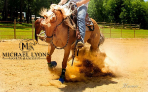 Intro to Reining Clinic @ Michael Lyons Horsemanship | Randleman | North Carolina | United States