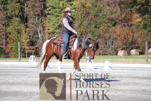 Western Dressage Play Days @ Michael Lyons Horsemanship | Randleman | North Carolina | United States