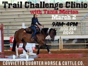 Trail Challenge Clinic with Tania Morton @ Cavvietta Quarter Horse & Cattle Co. | Elm City | North Carolina | United States